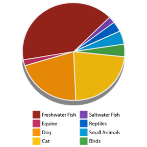 Distribution of animals kept as pets